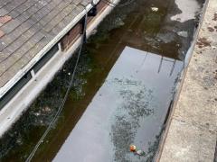 Pooling flat roof